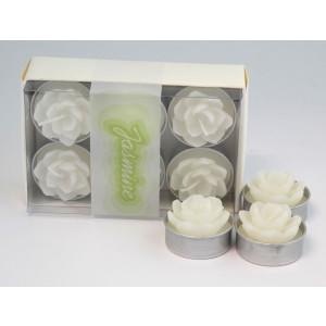 Teelicht Jasminblüte - weiß 6er Box 8x12,5x4,5cm NEU