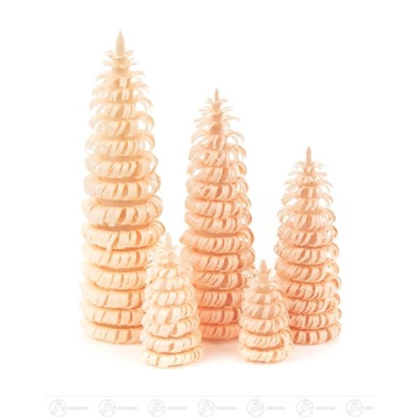 Ringelbäume ohne Stamm natur (5) Höhe = 3/4/6/8/10 cm NEU